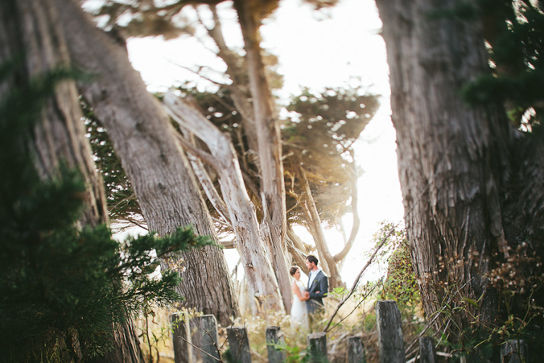 sea ranch wedding photographer still music wedding