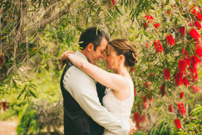 Still Music: Santa Cruz Wedding Photographers | UCSC Arboretum Wedding | H&H Garden Wedding