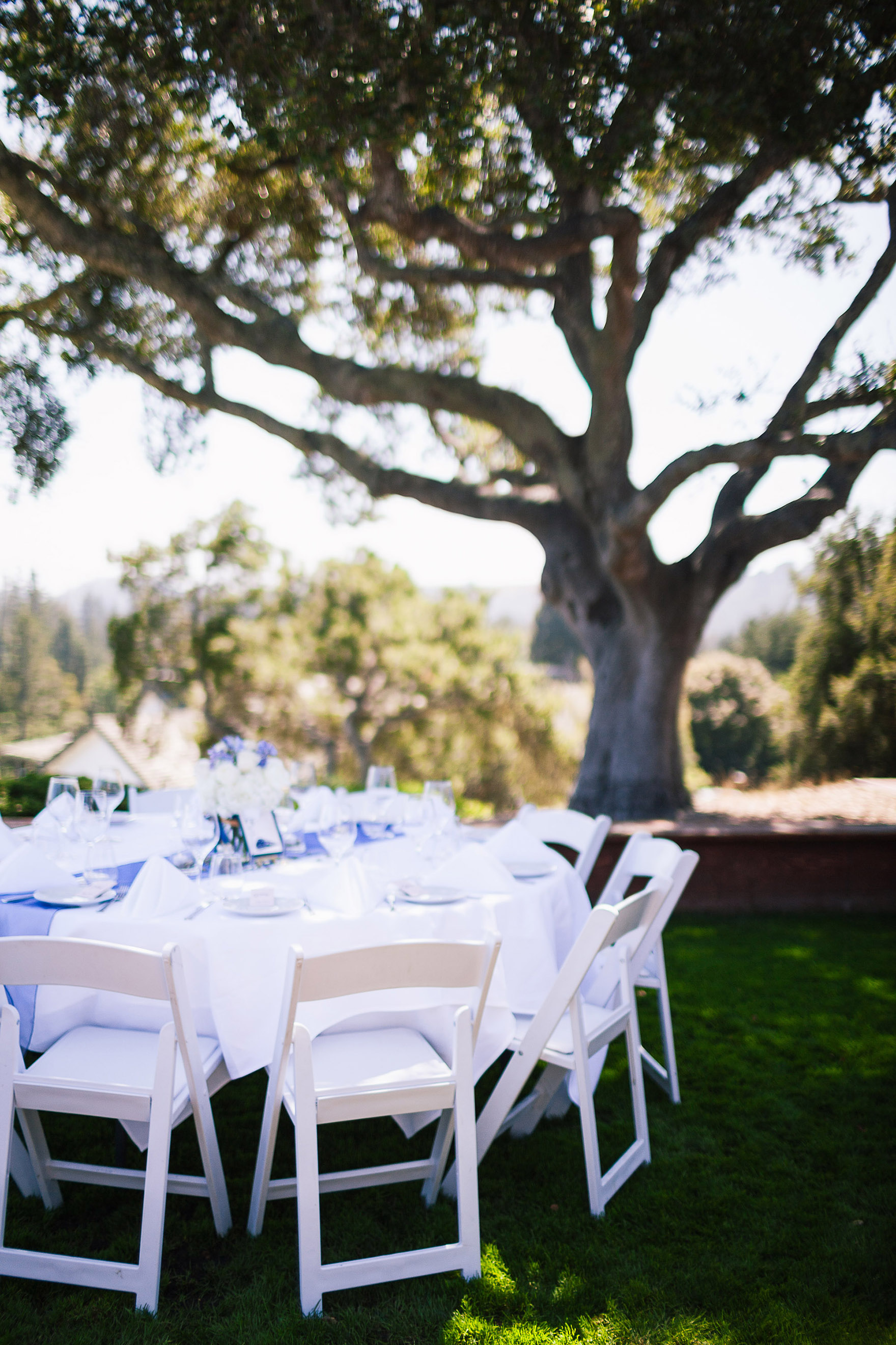decorated tables for an exciting hollins house reception sit over the monterey bay vista with decor and details and diy flowers floral bouquets under the green oak trees at the pasatiempo golf course at the bride and groom newlywed hollins house wedding the perfect santa cruz wedding venue