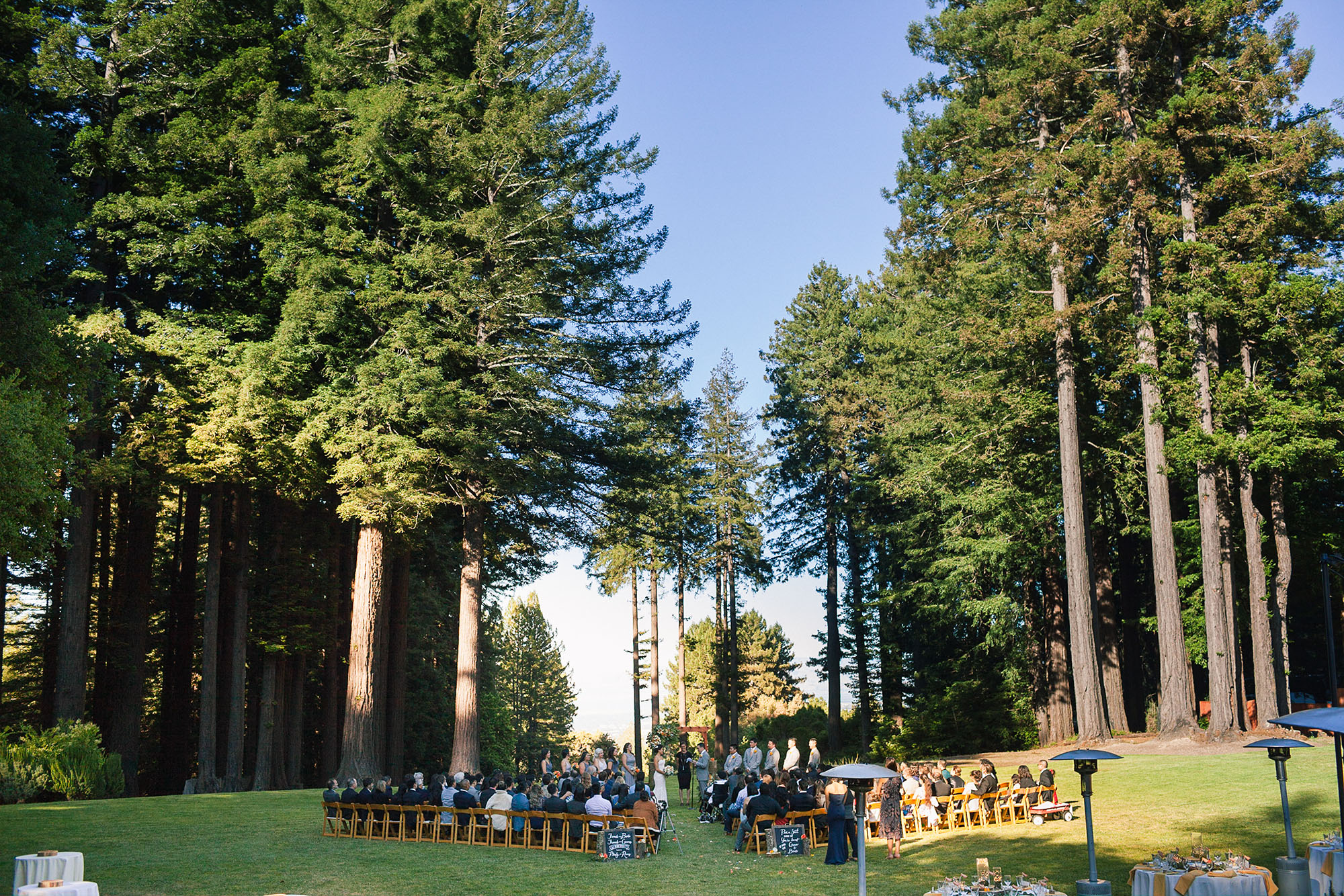 wedding ceremony celebration among the giant redwoods in the santa cruz mountain at this mountain terrace wedding in the los gatos hills